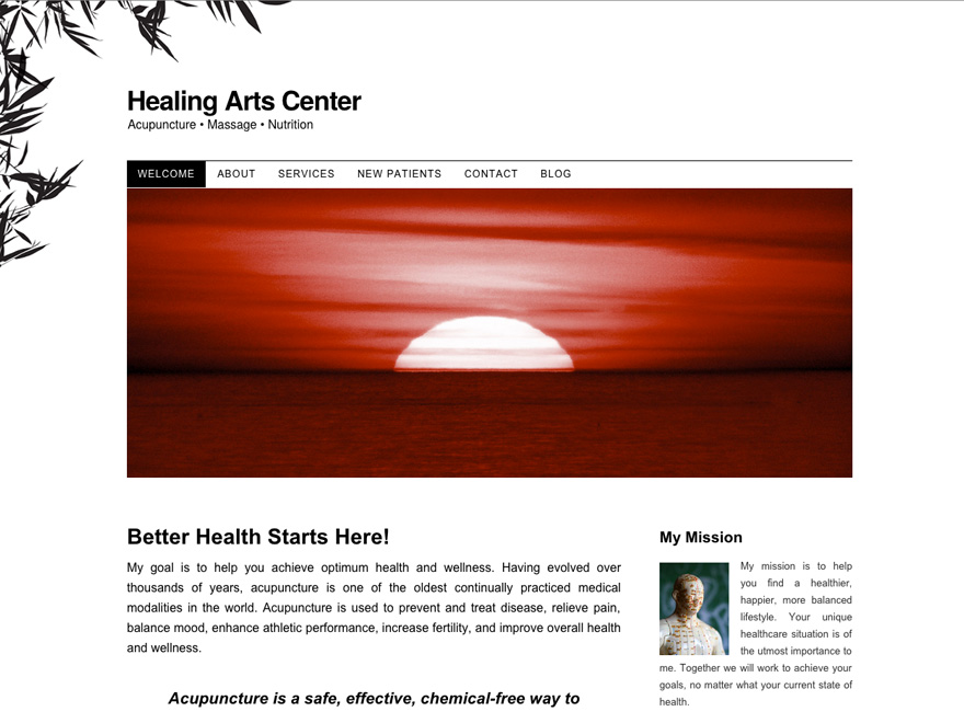 Zen Garden, elegant acupuncture website design (#00020)