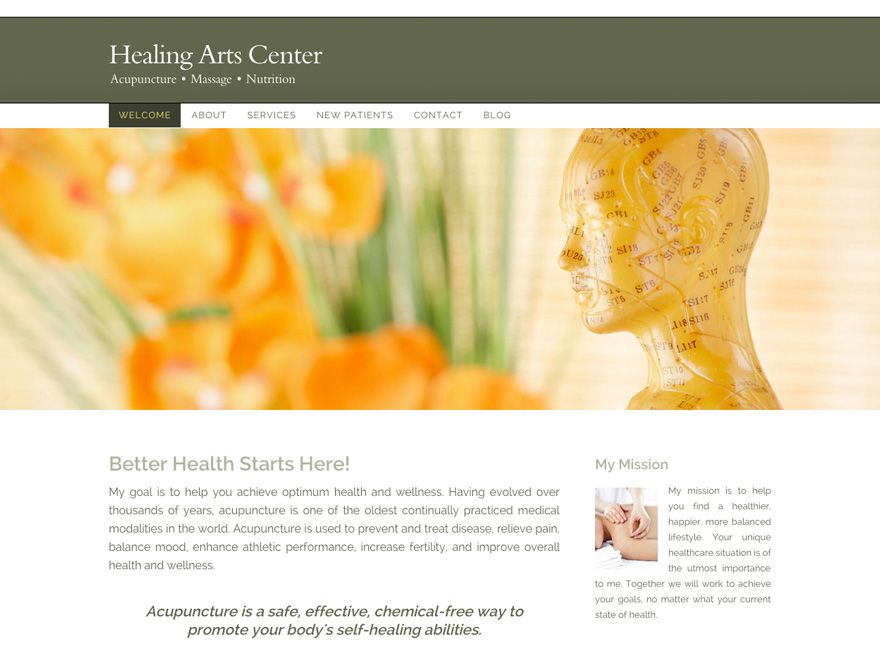 Simplicity Realized acupuncture web template (#00030)