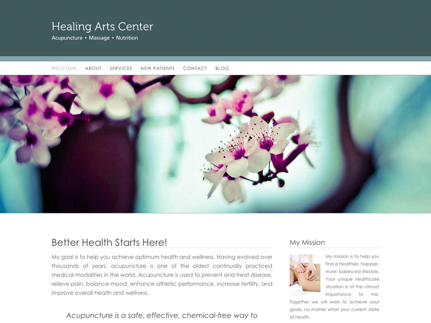 Simple banner acupuncturist website theme (#00052)